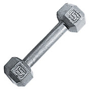 Fitness Gear 5 lb Cast Hex Dumbbell