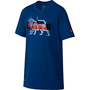 Nike Boys' Dry LeBron Lion Graphic T-Shirt